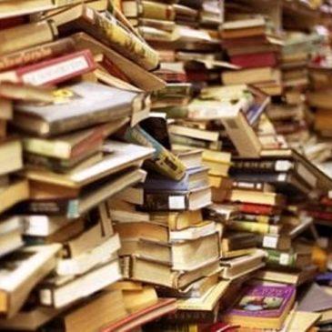Salone del Libro – I timori dei piccoli editori su spazi e costi